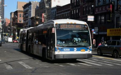 Bus Growth Sliding In New York: A Worrying Trend!